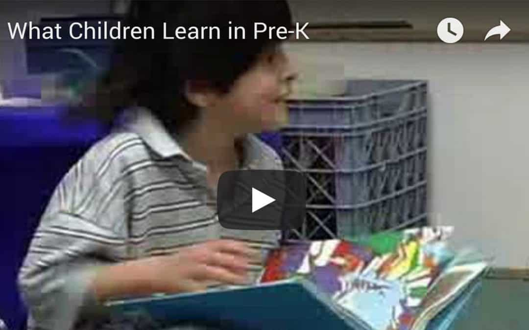 What Children Learn in Pre-K